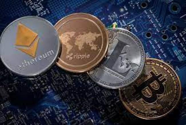 Kripto Piyasasında Büyük Panik