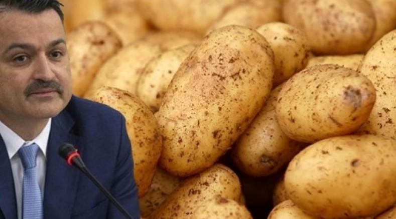 Patatesten Bakan